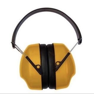 ausines triuksmo prevencijai
